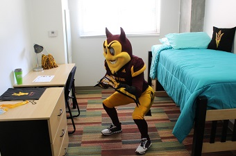 sparky doing squats